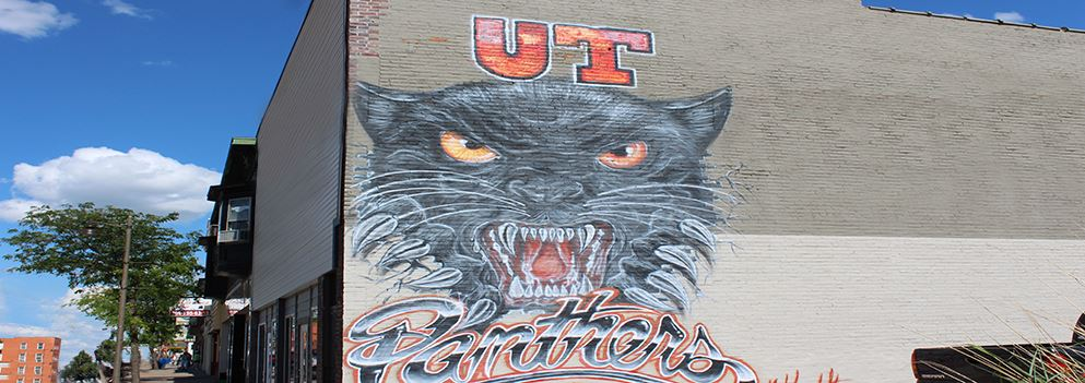Panther&#39s Wall Mural 9th &15th Street